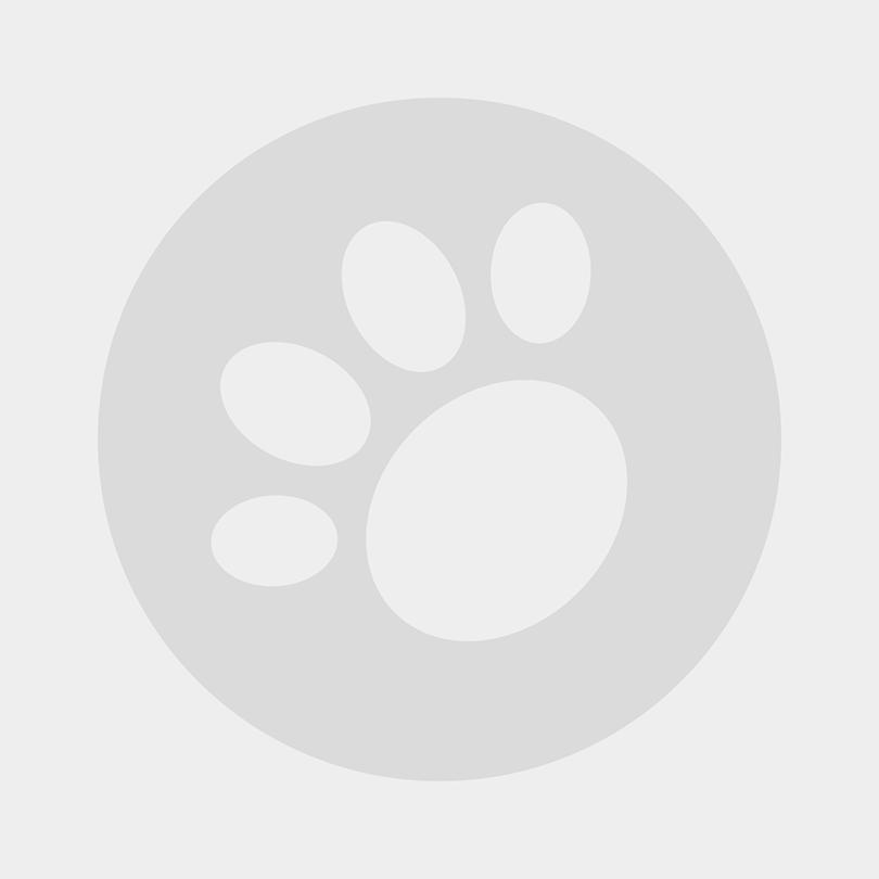 Arden Grange Sensitive Ocean White Fish and Potato Puppy Junior Dog Food